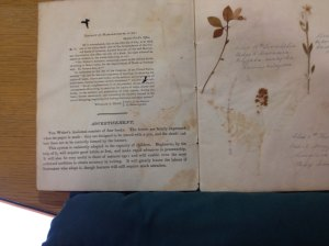 Inside cover of The Writer's Assistant by Joseph Seavy. Boston, 1814 Newberry Library Case Wing Z43 .S43 1814